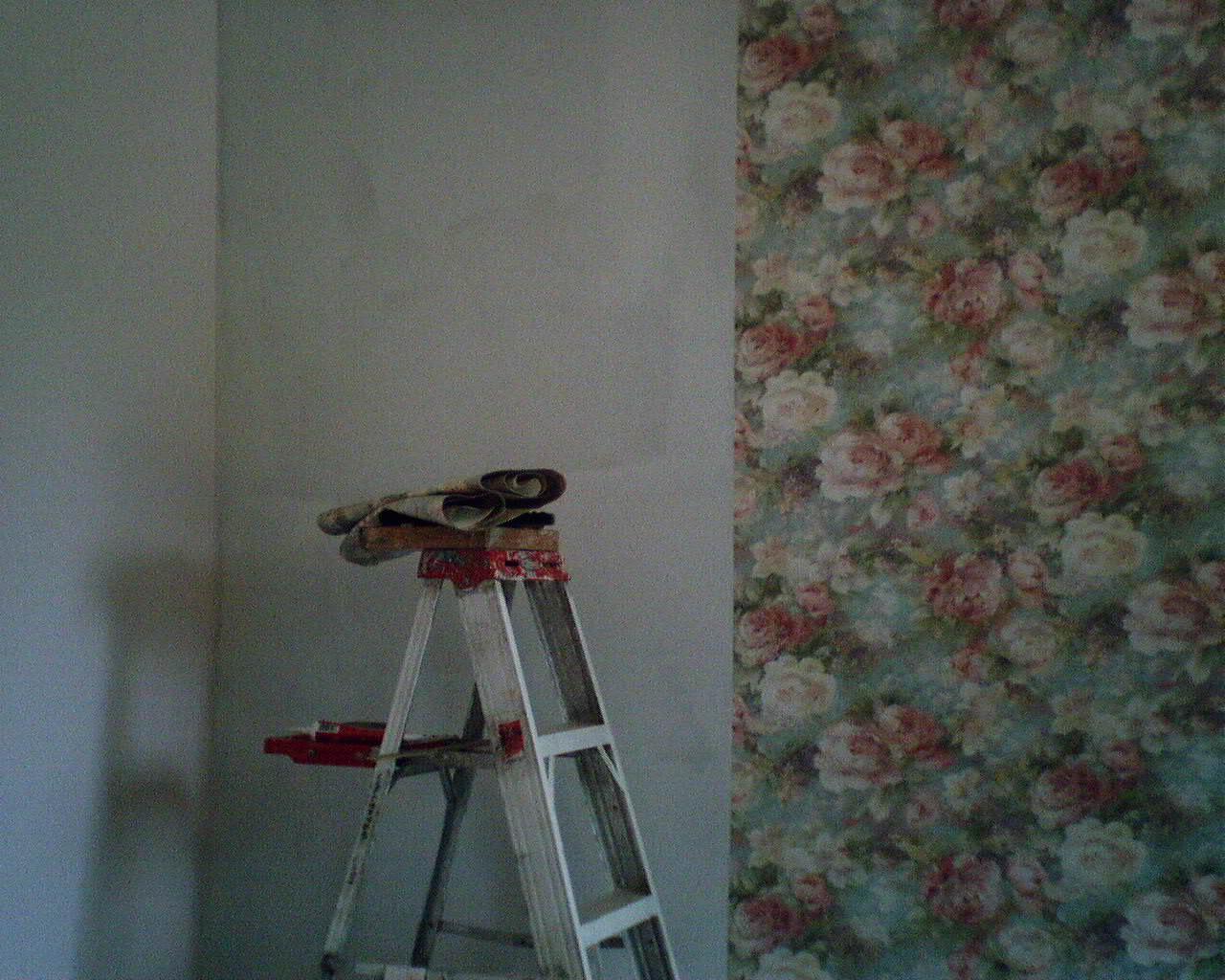 wallpaper hanger houston  Wallpaperladys Blog