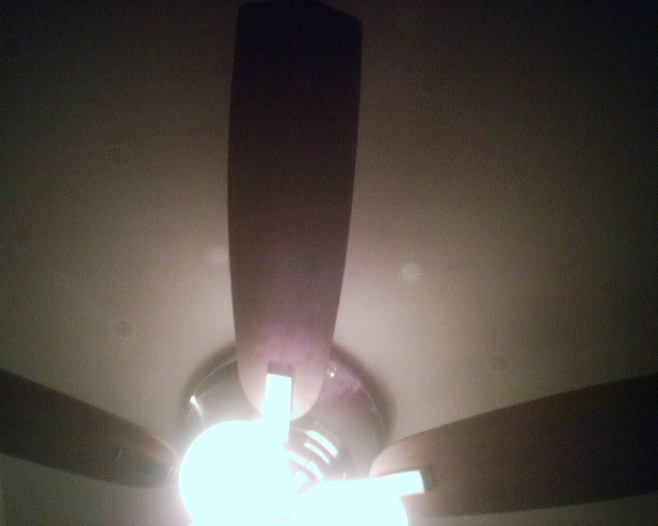 Wallpapering Ceilings With A Fan Wallpaperlady 39 S Blog