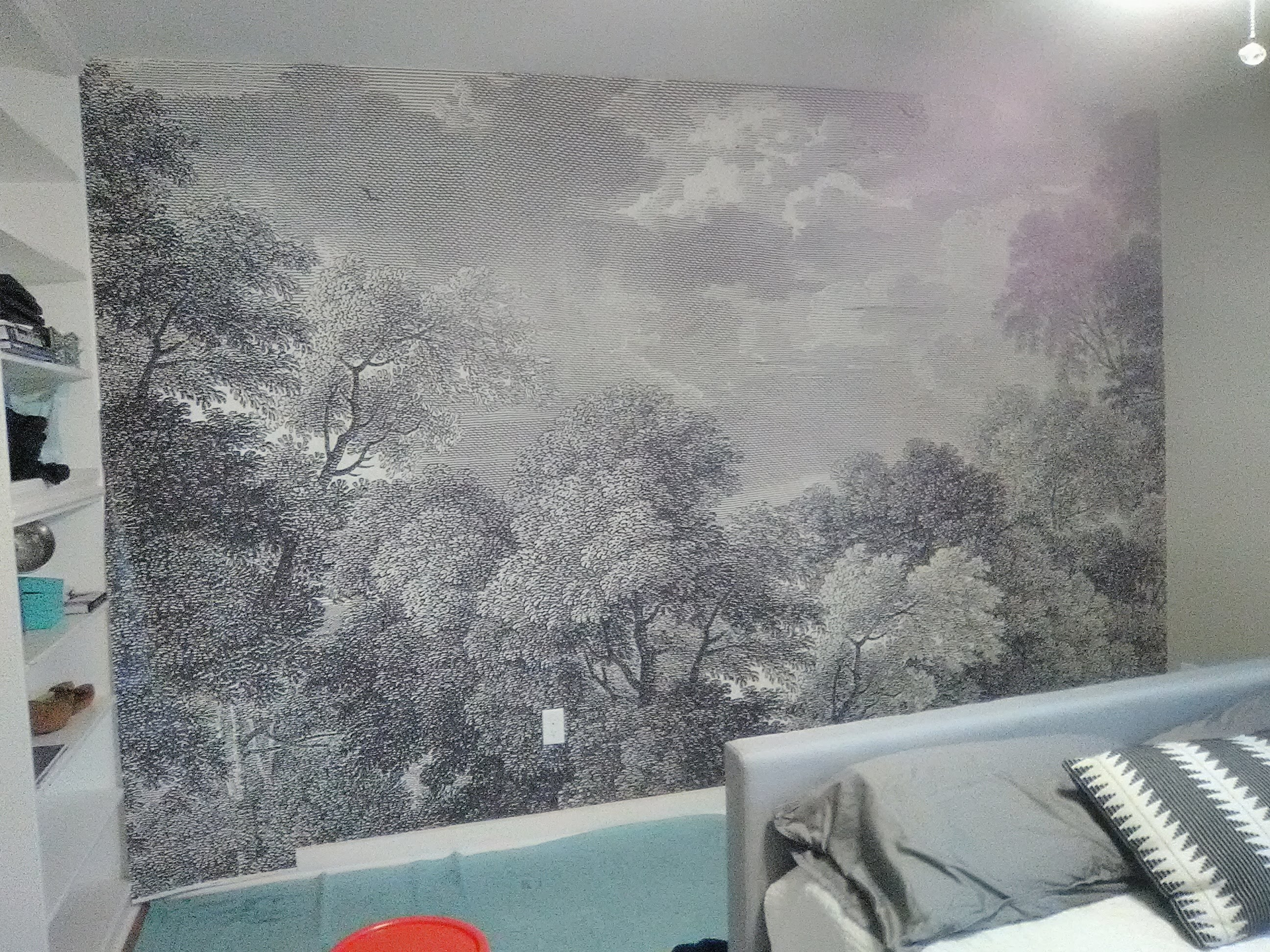 Etched Arcadia Mural On A Bedroom Accent Wall