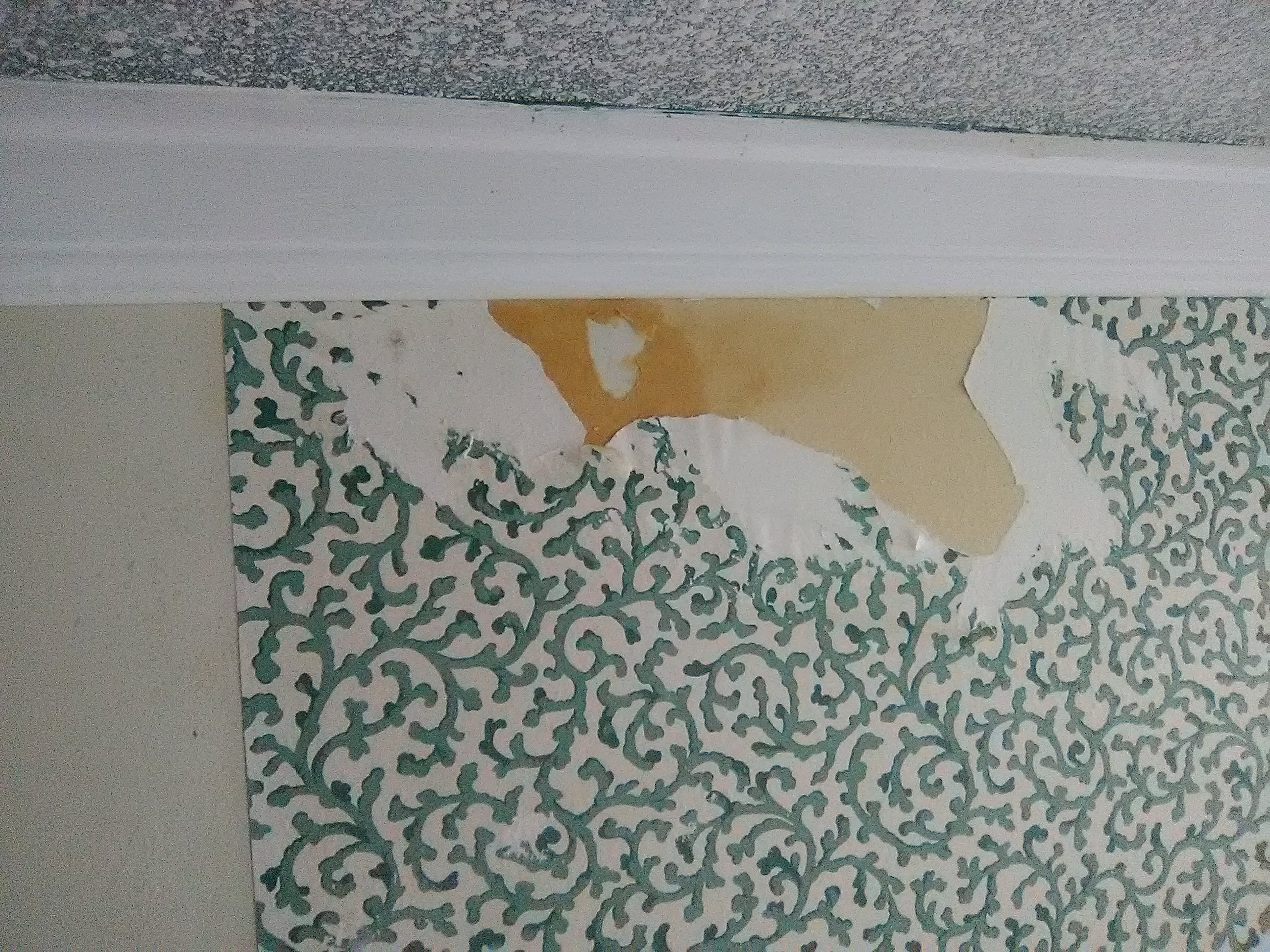 This Hall Bathroom In A 1955 Ranch Style Home In The Briargrove /  Tanglewood Neighborhood Of Houston Was Damaged By A Roof Leak During  Hurricane Harvey.