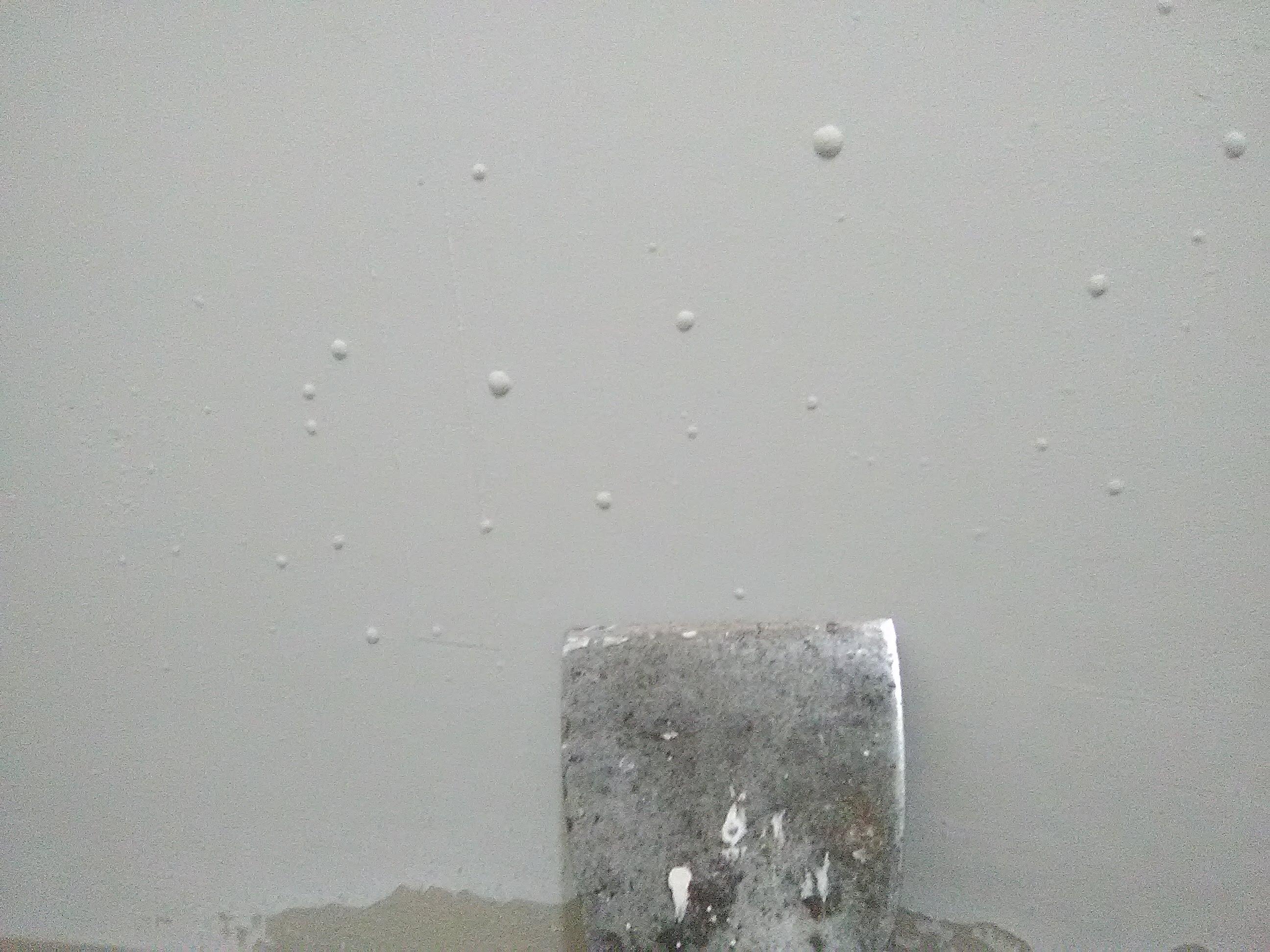 Latex paint bubbles